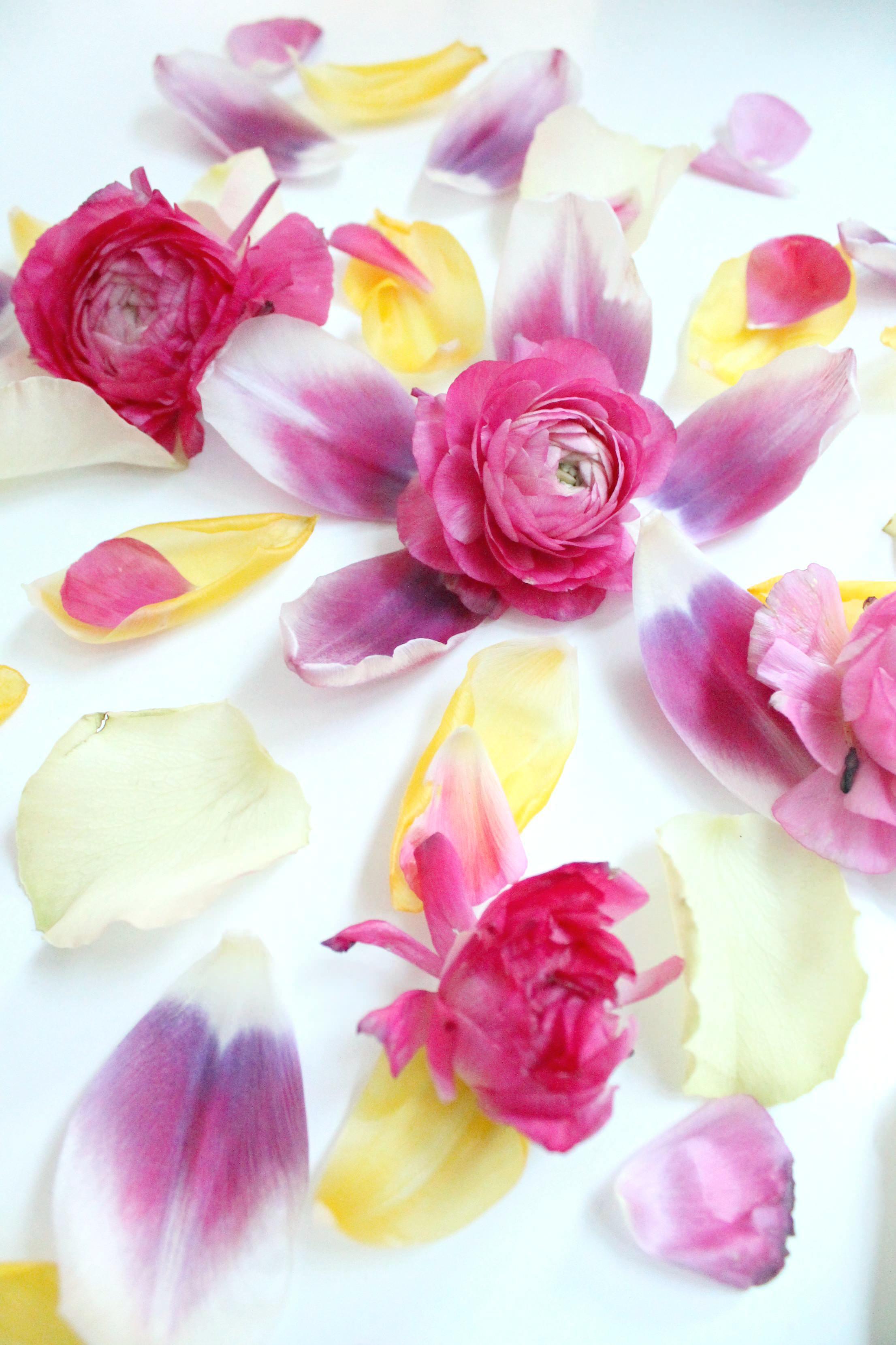 Flower-petals-by-Little-Big-Bell