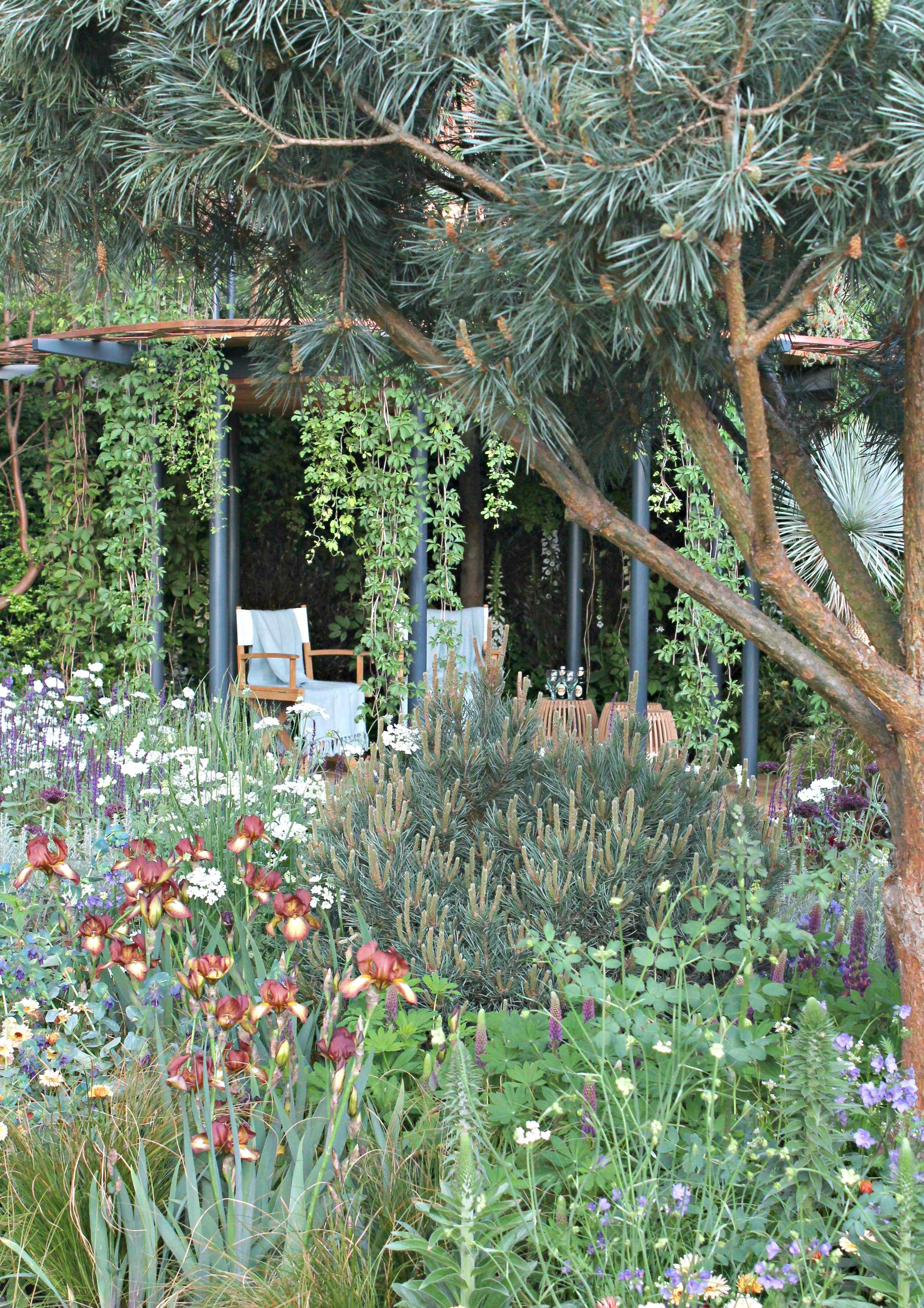 Chelsea-flower-show-garden-photo-by-Geraldine-Tan-of-Little-Big-Bell