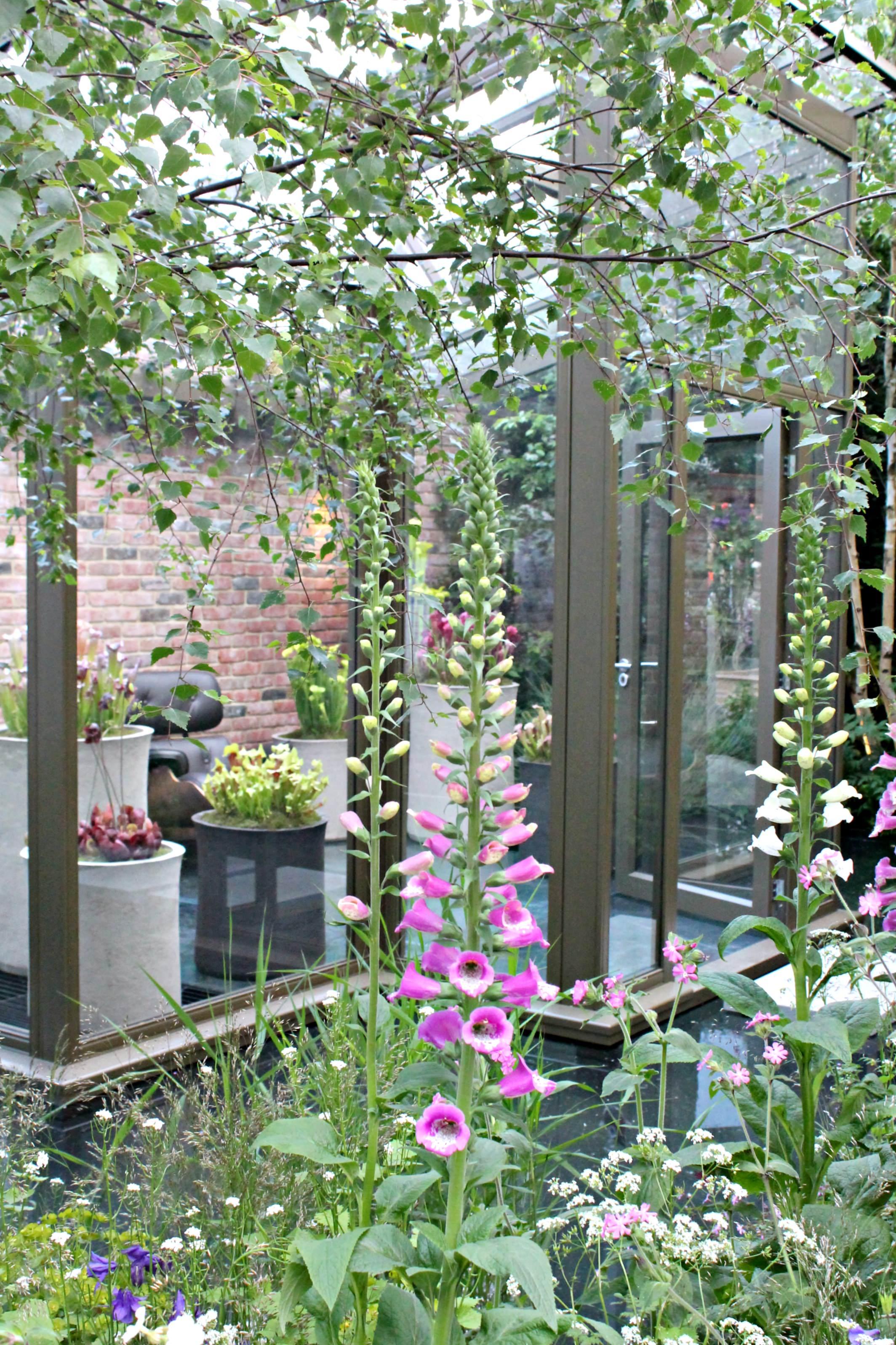 The-Hartley-Botanic-garden-Chelsea-Flower-show-photo-by-Geraldine-Tan-Little-Big-Bell