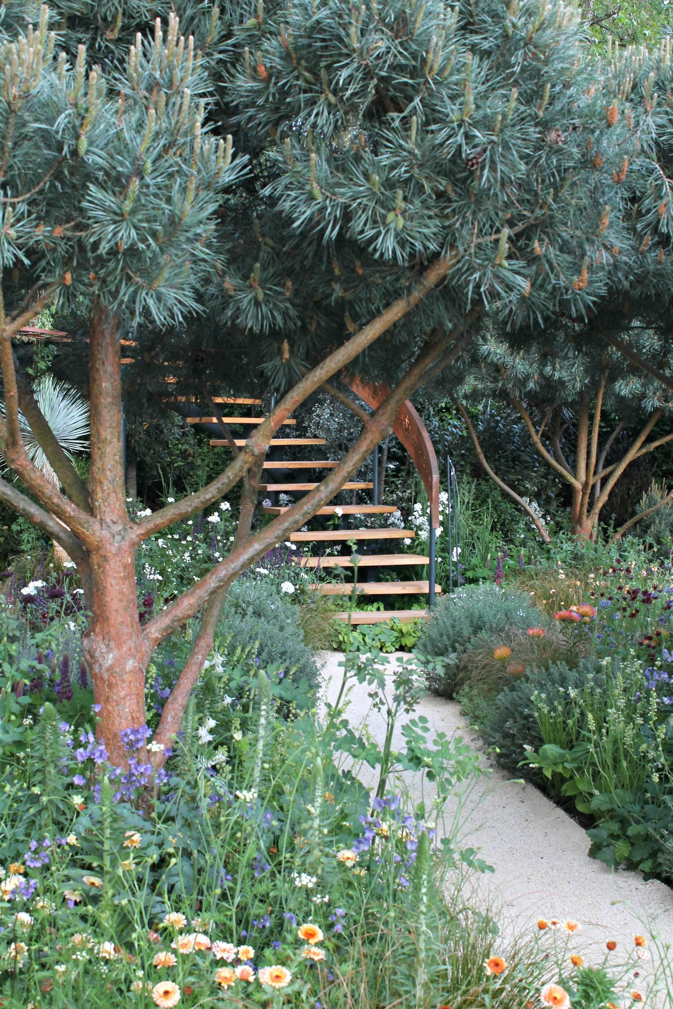 The Mathematician's garden-photo-by-Little-Big-Bell