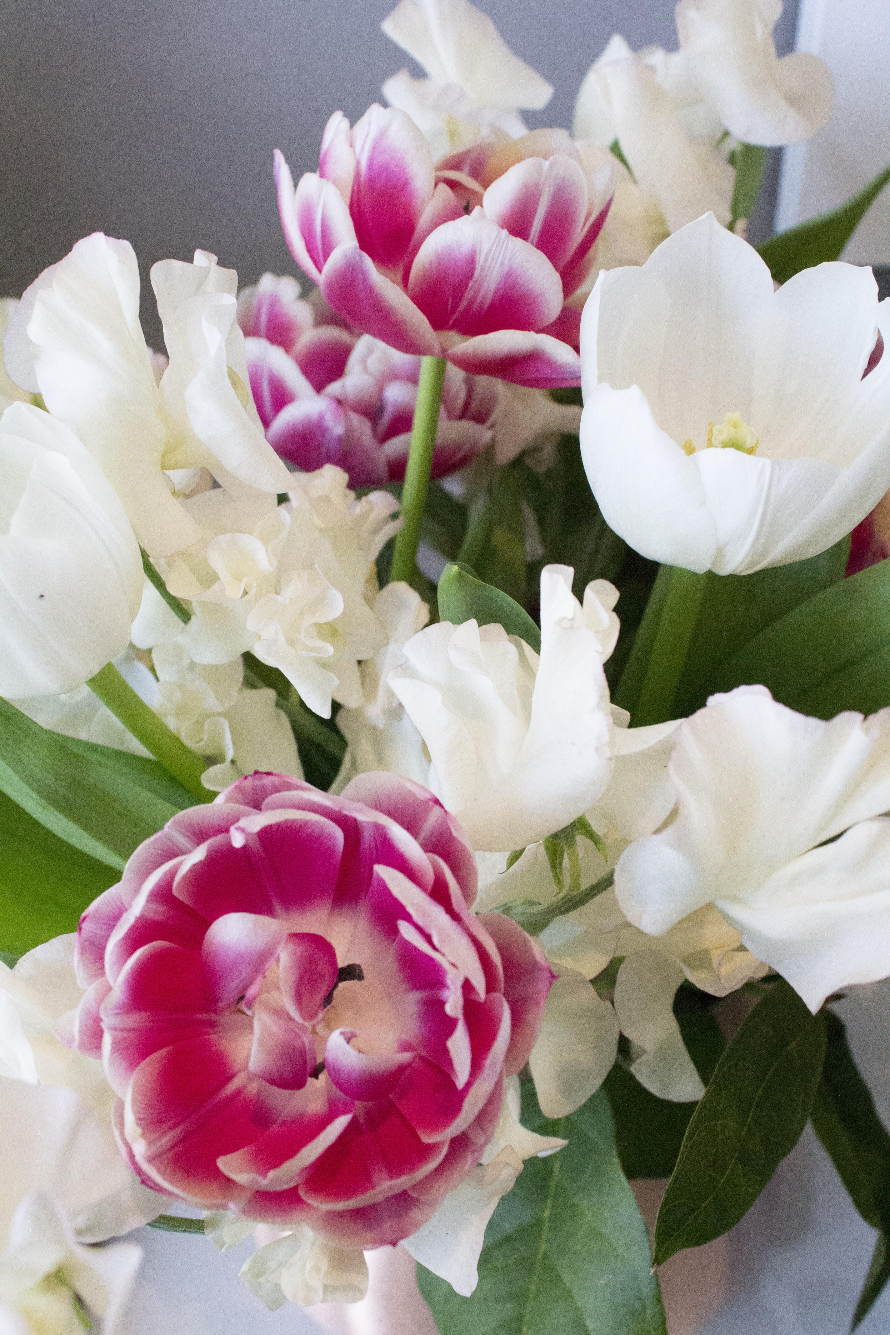 Tulips-photo-by-Geraldine-Tan-Little-Big-Bell
